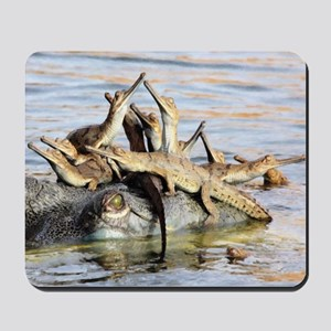 Baby Alligators Mousepad