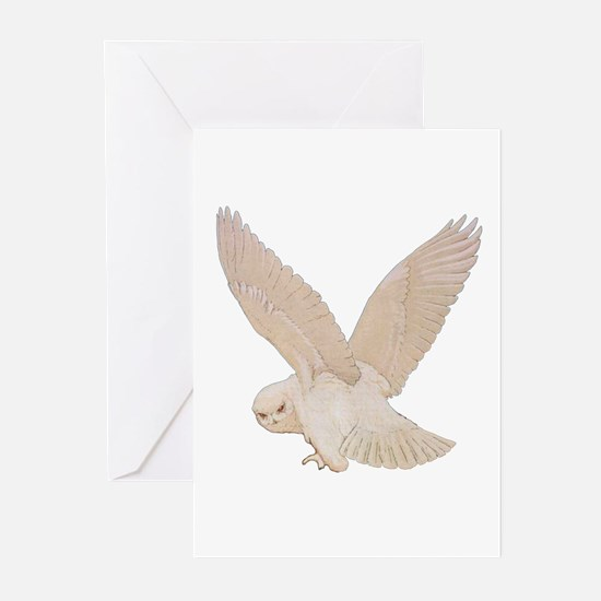 HEDWIG THE OWL Greeting Cards (Pk of 10)