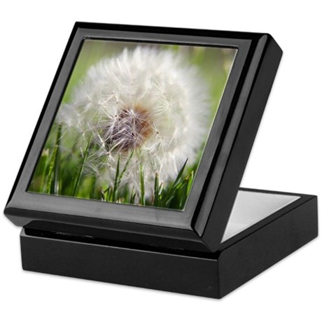 Dandylion Keepsake Box