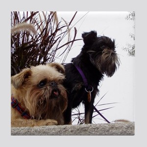 Tile Coaster (Rough Brussels Griffons)