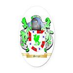 Serpy Oval Car Magnet