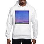 13.venice beach/ prayer..? Hooded Sweatshirt