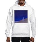 05.secretz beach..? Hooded Sweatshirt