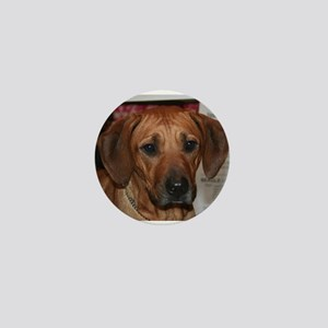 rhodesian ridgeback Mini Button