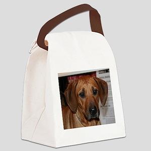 rhodesian ridgeback Canvas Lunch Bag