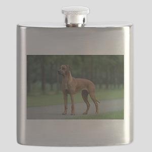 rhodesian ridgeback full 2 Flask