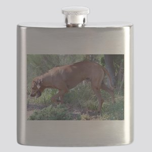 rhodesian ridgeback full Flask