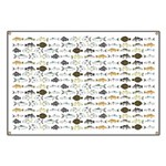 Florida Inshore Fishes Banner