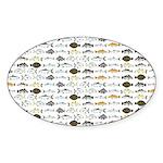 Florida Inshore Fishes Sticker