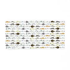 Florida Inshore Fishes Aluminum License Plate