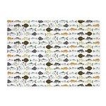 Florida Inshore Fishes 5'x7'Area Rug