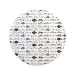 Florida Inshore Fishes Button