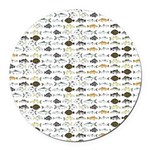 Florida Inshore Fishes Round Car Magnet