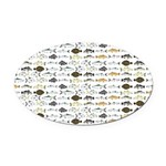 Florida Inshore Fishes Oval Car Magnet