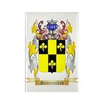 Semennikov Rectangle Magnet (100 pack)