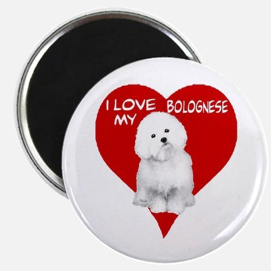 Cute Bolognese Magnet