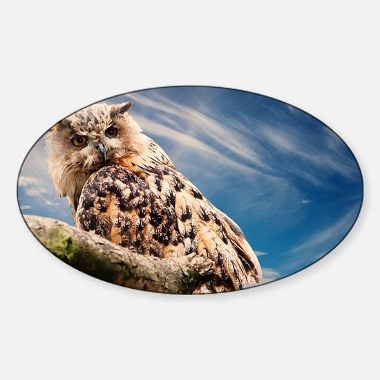 OWL AND SKY Sticker (Oval)