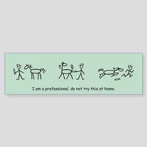 I am a Professional: Vet / Bumper Sticker