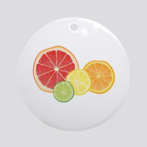 Citrus Fruit Round Ornament