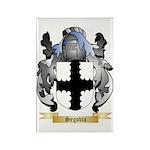 Segovia Rectangle Magnet (100 pack)