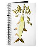 Giant Tigerfish attacks Jewel Cichlids Journal
