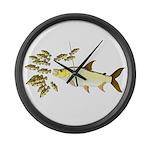 Giant Tigerfish attacks Jewel Cichlids Large Wall