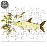 Giant Tigerfish attacks Jewel Cichlids Puzzle