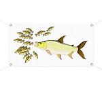Giant Tigerfish attacks Jewel Cichlids Banner