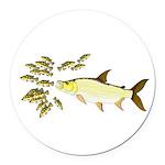 Giant Tigerfish attacks Jewel Cichlids Round Car M