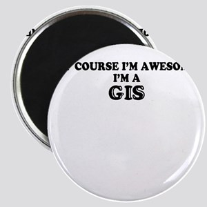 Of course I'm Awesome, Im GIS Magnets