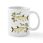 Giant Tigerfish attacks Jewel Cichlids Mugs