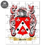 Searle Puzzle