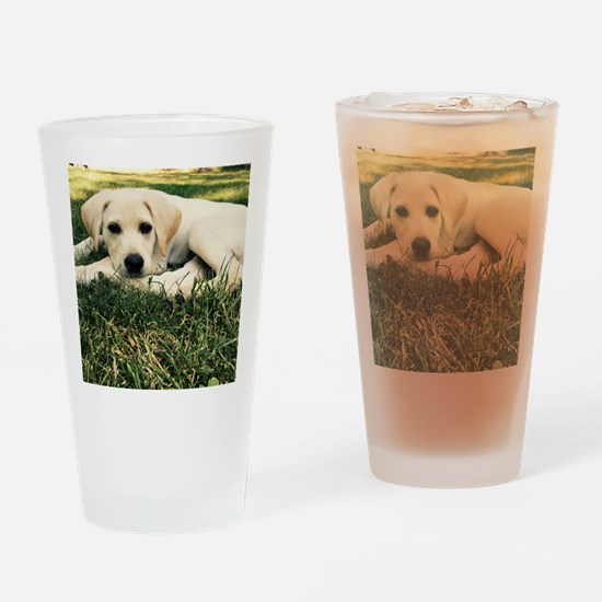 Funny Yellow lab dog Drinking Glass