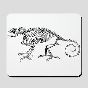 Vintage Chameleon Lizard Skeleton Lizard Mousepad