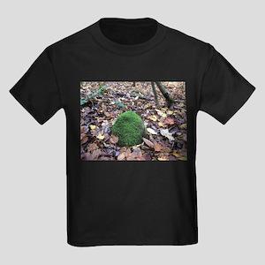 Moss covered rock T-Shirt