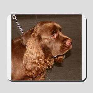 sussex spaniel Mousepad