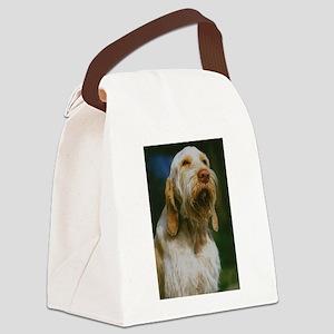 spinone italiano Canvas Lunch Bag