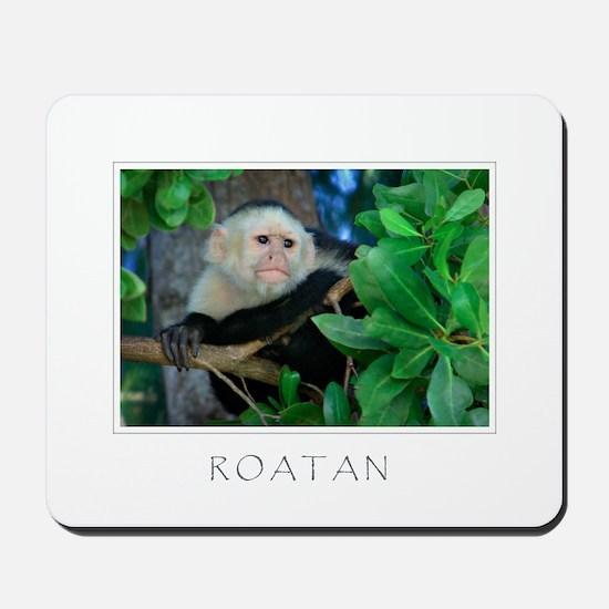 Monkey Roatan Mousepad