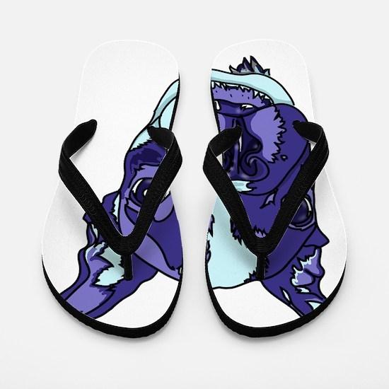Funny Sids Flip Flops