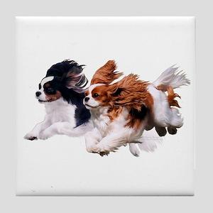 Cavaliers - Color Tile Coaster