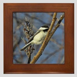 Chickadee on sumac Framed Tile