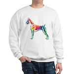 Boxer Color Splash Sweatshirt