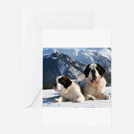 saint bernard group Greeting Cards