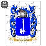 Schumacher Puzzle