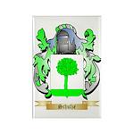Schulze Rectangle Magnet (100 pack)