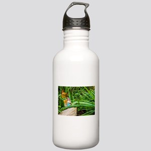 Fall Walk Roy Stainless Water Bottle 1.0L