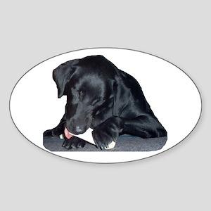 """""""My Buddy"""" Oval Sticker"""