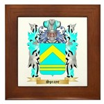 Spraye Framed Tile