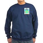 Spray Sweatshirt (dark)