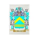 Spray Rectangle Magnet (100 pack)